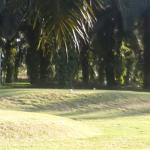 Stay at Zenith, tee off in lush of oil palm greenery in Lepar, Kuantan. LKPP Golf & Country Club