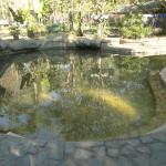San Kamphaeng Hot Springs Foto