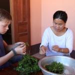 Photo of Luang Prabang Homestay