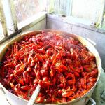Gilbert's Crawfish Tub