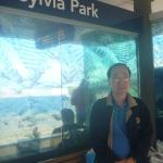 Sylvia Park Auckland Foto