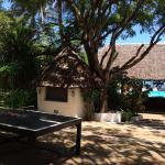 Ping Pong and Pool Bar