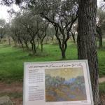 Photo de Parcours Vincent van Gogh
