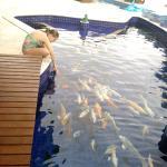 Photo de Pousada Marias do Mar