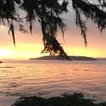 Hidden Cove Lodge Foto