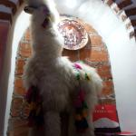Foto de Inca Restaurante