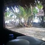 View of neighbour villa from inside room
