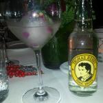 Gin-Apéro mit Sylter Meersalz on the rocks