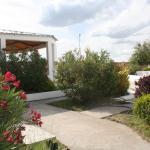 Jardin de acceso al quincho