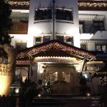 Hotel Villa Monica resmi