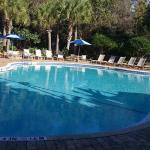pool, 85 degrees