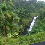 Foto de The Inn at Kulaniapia Falls
