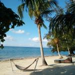 Photo de Phangan Beach Resort