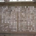 Ohikiwari Kohikiwari
