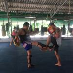 Jun Muay Thai Boxing Camp