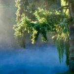 Early morning mist from Waikato River