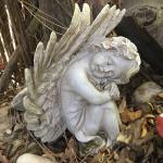 Swellendam fairy sanctuary Foto