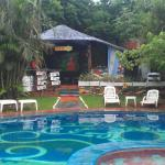 Foto de Mango Tree Hostel Bar