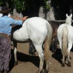 Photo of Estancia Ranquilco