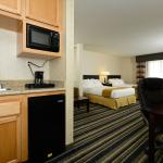 2 Queen Executive Suite (Holiday Inn Express & Suites Elk Grove)
