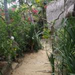 Escaleras a las cabañas cerca de la playa
