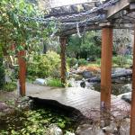 Loved the koi pond with waterfall & beautiful garden area.