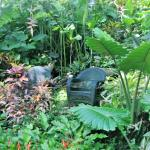 one of the comfy seating areas in the midst of the garden - great for relaxing or picnicking