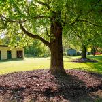 Buffalo Motel and Country Retreat