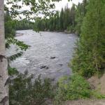 Fluss in der Umgebung