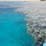 Photo de SENTIDO Reef Oasis Senses Resort