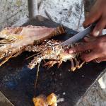 Don Fresh Lobsters Foto