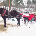 Vt Christmas... in a one horse open sleigh