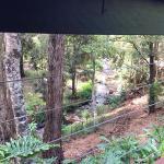 Foto de Escarpment Retreat