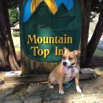 Mountain Top Inn Photo