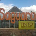 Zdjęcie The Saguaro Palm Springs, a Joie de Vivre Hotel