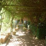 Lovely cool walkway
