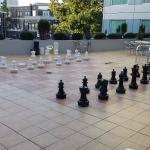 Outdoor life size chess game!