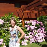 Jardins e suas flores inclusive a minha amada esposa