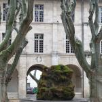 La cour et la fontaine