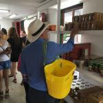 Clientes cosechando productos de Cafe de Colombia