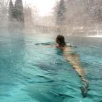 Außenpool im Winter I