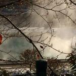Außenpool im Winter II