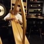 Luc Vanlaere Harpist Foto