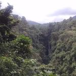 La Fortuna Waterfall with zip lines visible