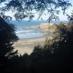 Photo de Pacific Reef Hotel - Gold Beach