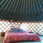 Photo of Yurts Tarifa