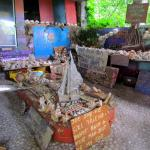 North Shore Shell Museum Foto