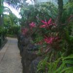 Photo de Lennox Beach Resort - Lennox Head