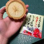 Complimentary Japanese apple biscuit