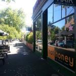 Hot Honey Cafe